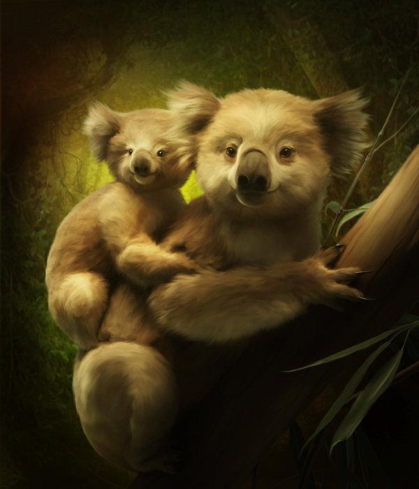 koalas_by_elenadudina-d4gg56l