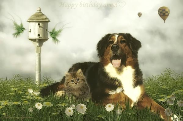 happy_birthday_angel_by_katarina_zirine-d81a73x